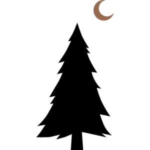 WILD PR icon